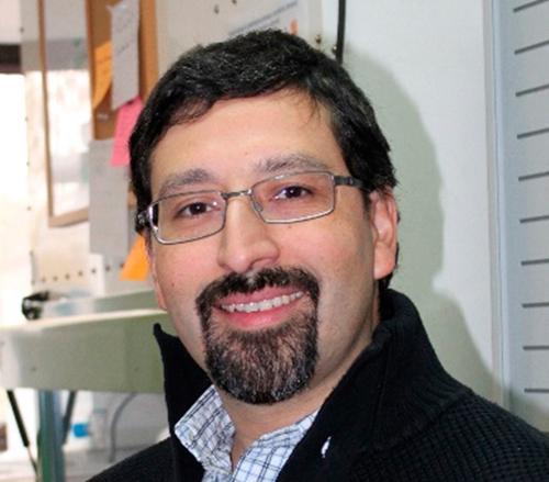 Rafael A. Medina